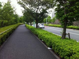 WakabadaiStreet.jpg